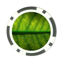 Leaf Nature Green The Leaves Poker Chip Card Guard (10 Pack)