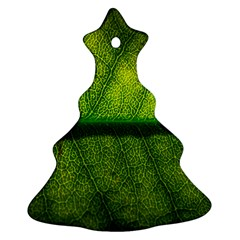 Leaf Nature Green The Leaves Christmas Tree Ornament (two Sides)