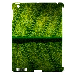 Leaf Nature Green The Leaves Apple Ipad 3/4 Hardshell Case (compatible With Smart Cover) by Nexatart