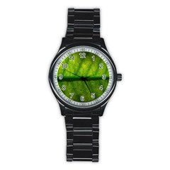 Leaf Nature Green The Leaves Stainless Steel Round Watch by Nexatart
