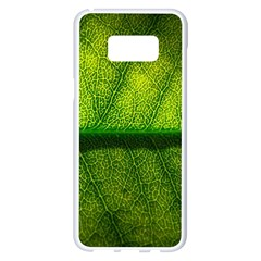 Leaf Nature Green The Leaves Samsung Galaxy S8 Plus White Seamless Case by Nexatart