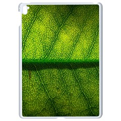 Leaf Nature Green The Leaves Apple Ipad Pro 9 7   White Seamless Case
