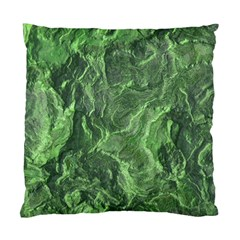 Geological Surface Background Standard Cushion Case (one Side)