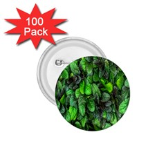 The Leaves Plants Hwalyeob Nature 1 75  Buttons (100 Pack)