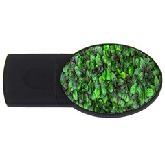 The Leaves Plants Hwalyeob Nature Usb Flash Drive Oval (4 Gb)