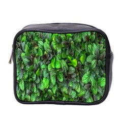 The Leaves Plants Hwalyeob Nature Mini Toiletries Bag 2-side