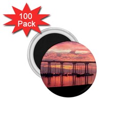 20161215 063119 1 75  Magnets (100 Pack)  by AmateurPhotographyDesigns
