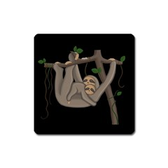 Cute Sloth Square Magnet