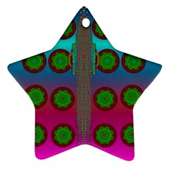 Meditative Abstract Temple Of Love And Meditation Ornament (star)