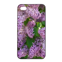 Lilacs 2 Apple Iphone 4/4s Seamless Case (black) by dawnsiegler