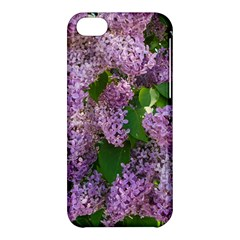 Lilacs 2 Apple Iphone 5c Hardshell Case by dawnsiegler