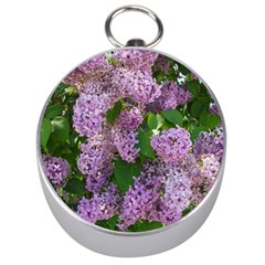 Lilacs 2 Silver Compasses by dawnsiegler