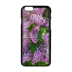 Lilacs 2 Apple Iphone 6/6s Black Enamel Case by dawnsiegler