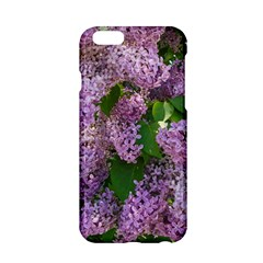 Lilacs 2 Apple Iphone 6/6s Hardshell Case by dawnsiegler