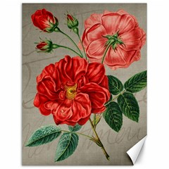 Flower Floral Background Red Rose Canvas 12  X 16   by Nexatart