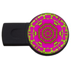 Fern Forest Star Mandala Decorative Usb Flash Drive Round (2 Gb) by pepitasart