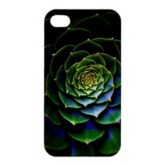 Nature Desktop Flora Color Pattern Apple Iphone 4/4s Premium Hardshell Case