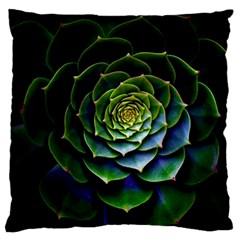 Nature Desktop Flora Color Pattern Large Cushion Case (one Side)