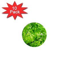 Green Wood The Leaves Twig Leaf Texture 1  Mini Magnet (10 Pack)