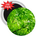 Green Wood The Leaves Twig Leaf Texture 3  Magnets (100 pack) Front