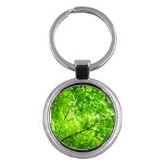 Green Wood The Leaves Twig Leaf Texture Key Chains (round)  by Nexatart