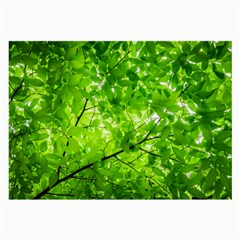 Green Wood The Leaves Twig Leaf Texture Large Glasses Cloth
