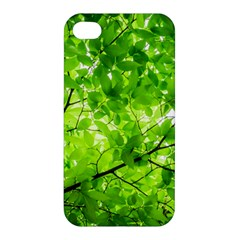 Green Wood The Leaves Twig Leaf Texture Apple Iphone 4/4s Hardshell Case