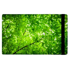 Green Wood The Leaves Twig Leaf Texture Apple Ipad 2 Flip Case by Nexatart