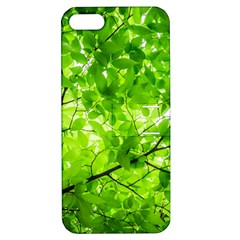 Green Wood The Leaves Twig Leaf Texture Apple Iphone 5 Hardshell Case With Stand