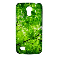 Green Wood The Leaves Twig Leaf Texture Galaxy S4 Mini by Nexatart