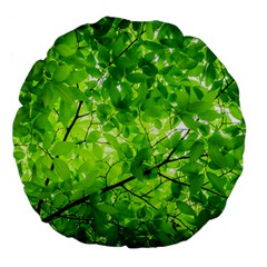 Green Wood The Leaves Twig Leaf Texture Large 18  Premium Flano Round Cushions