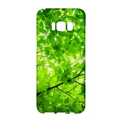 Green Wood The Leaves Twig Leaf Texture Samsung Galaxy S8 Hardshell Case  by Nexatart