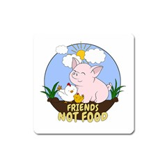 Friends Not Food   Cute Pig And Chicken Square Magnet by Valentinaart