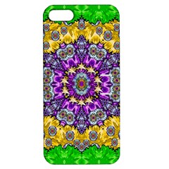 Sunshine In Mind The Season Is Decorative Fine Apple Iphone 5 Hardshell Case With Stand by pepitasart