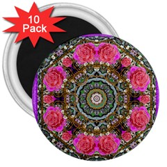 Roses In A Color Cascade Of Freedom And Peace 3  Magnets (10 Pack)  by pepitasart