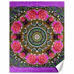 Roses In A Color Cascade Of Freedom And Peace Canvas 12  X 16   by pepitasart