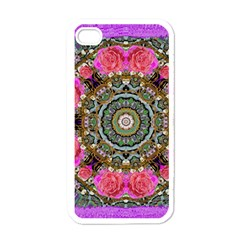 Roses In A Color Cascade Of Freedom And Peace Apple Iphone 4 Case (white) by pepitasart