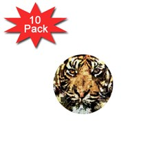 Tiger 1340039 1  Mini Magnet (10 Pack)  by 1iconexpressions
