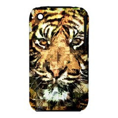 Tiger 1340039 Iphone 3s/3gs by 1iconexpressions