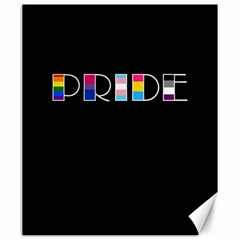 Pride Canvas 20  X 24