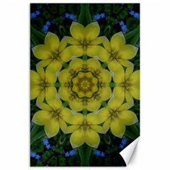 Fantasy Plumeria Decorative Real And Mandala Canvas 24  X 36  by pepitasart