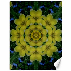 Fantasy Plumeria Decorative Real And Mandala Canvas 36  X 48