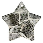 Coquina Shell Limestone Rocks Ornament (Star) Front