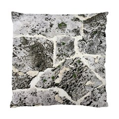 Coquina Shell Limestone Rocks Standard Cushion Case (two Sides)