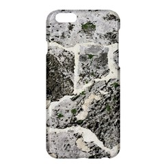 Coquina Shell Limestone Rocks Apple Iphone 6 Plus/6s Plus Hardshell Case
