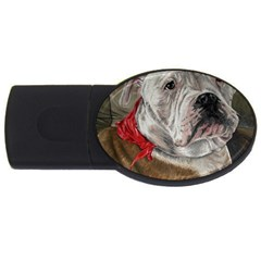 Dog Portrait Usb Flash Drive Oval (4 Gb) by redmaidenart
