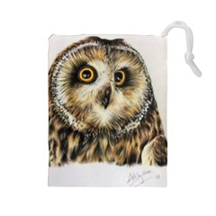 Owl Gifts Drawstring Pouch (large) by ArtByThree