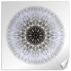Dandelion Head Flower Mandala Canvas 12  X 12   by flowermandalas