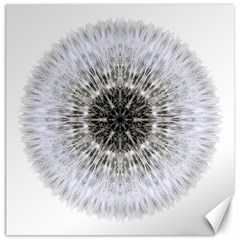 Dandelion Head Flower Mandala Canvas 16  X 16   by flowermandalas