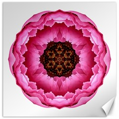 Pink Peony I Flower Mandala Canvas 12  X 12   by flowermandalas